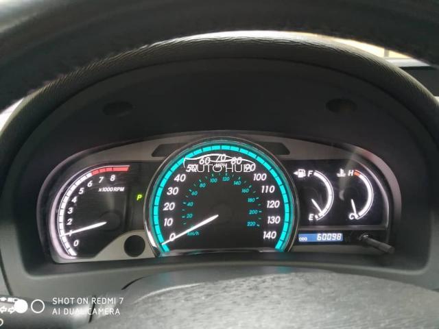 2009 Toyota Venza Brown