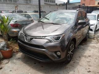 2019 Toyota RAV4 Grey