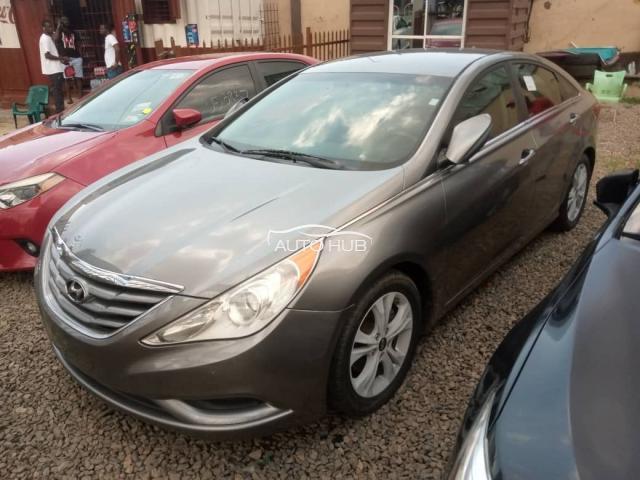 2010 Hyundai Sonata Grey