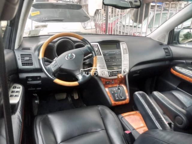 2004 Lexus  RX330 Grey
